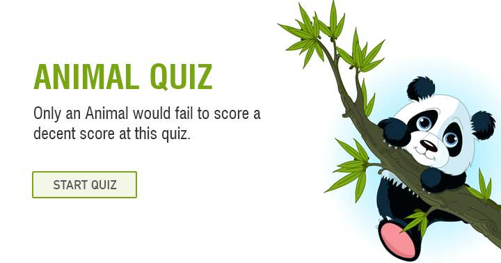 Only a donkey would fail to score a decent score at this animal trivia quiz.