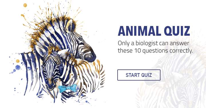 Can you answer these 10 hard quetions about The Animal Kingdom?