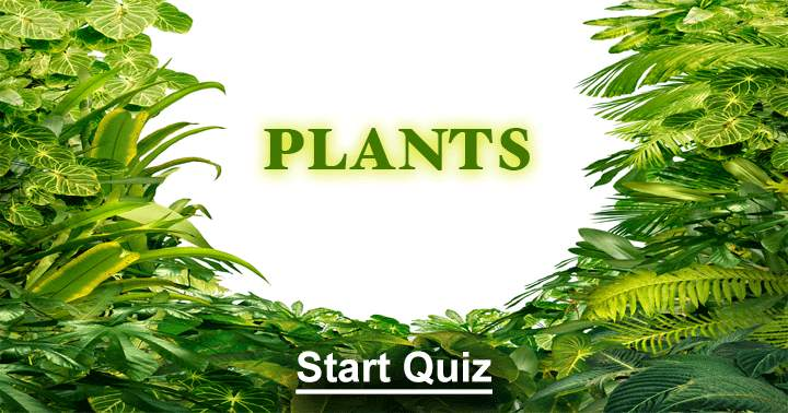 Plants Quiz. Can you answer them all?